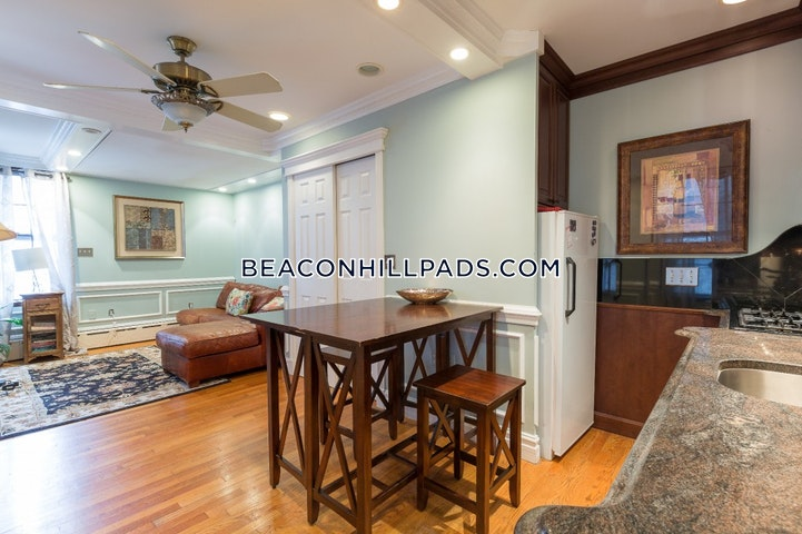 Mdern-Fully Furnished and Beautiful! - Boston - Beacon Hill $2,200
